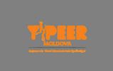 Y-PEER Moldova